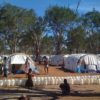 Menik Farm : 劣悪な環境のスリランカ国内避難民キャンプ(2009)