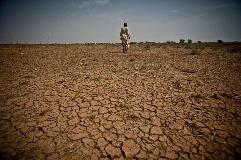 干ばつによりひび割れた大地:アフリカ、モーリタニア