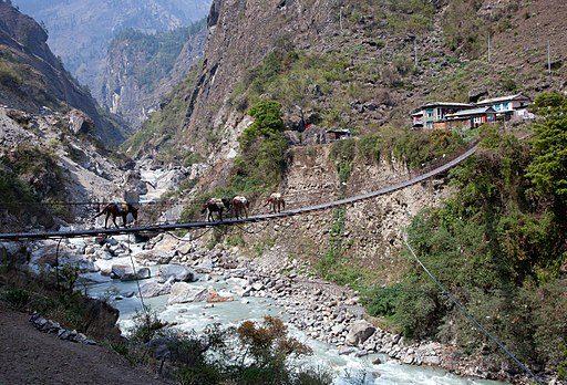 不安定な吊り橋を渡るキャラバン