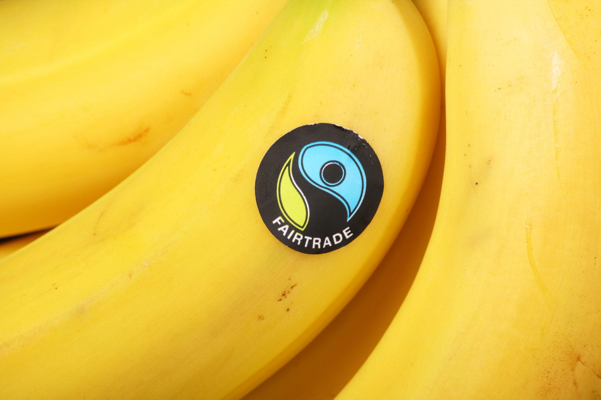 フェアトレード認証マーク付きのバナナ 写真:Thinglass/shutterstock.com