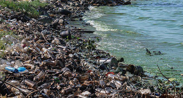 砂浜に流れ着いたゴミ