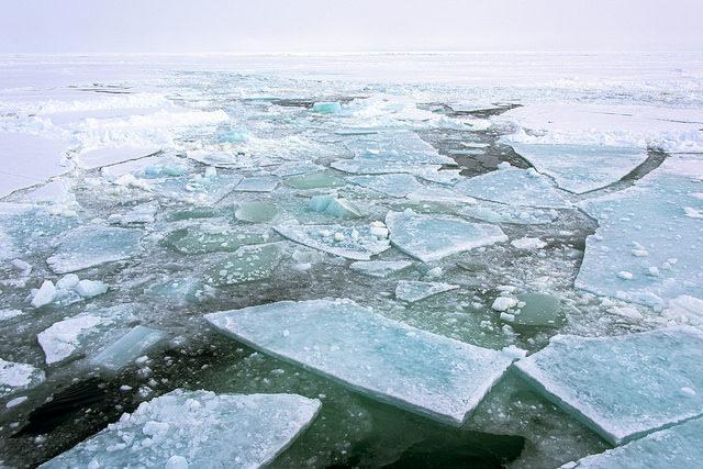 溶け出す北極の氷